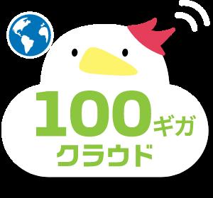 100GB